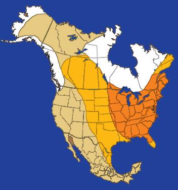 Arrowhead point distribution of Clovis culture